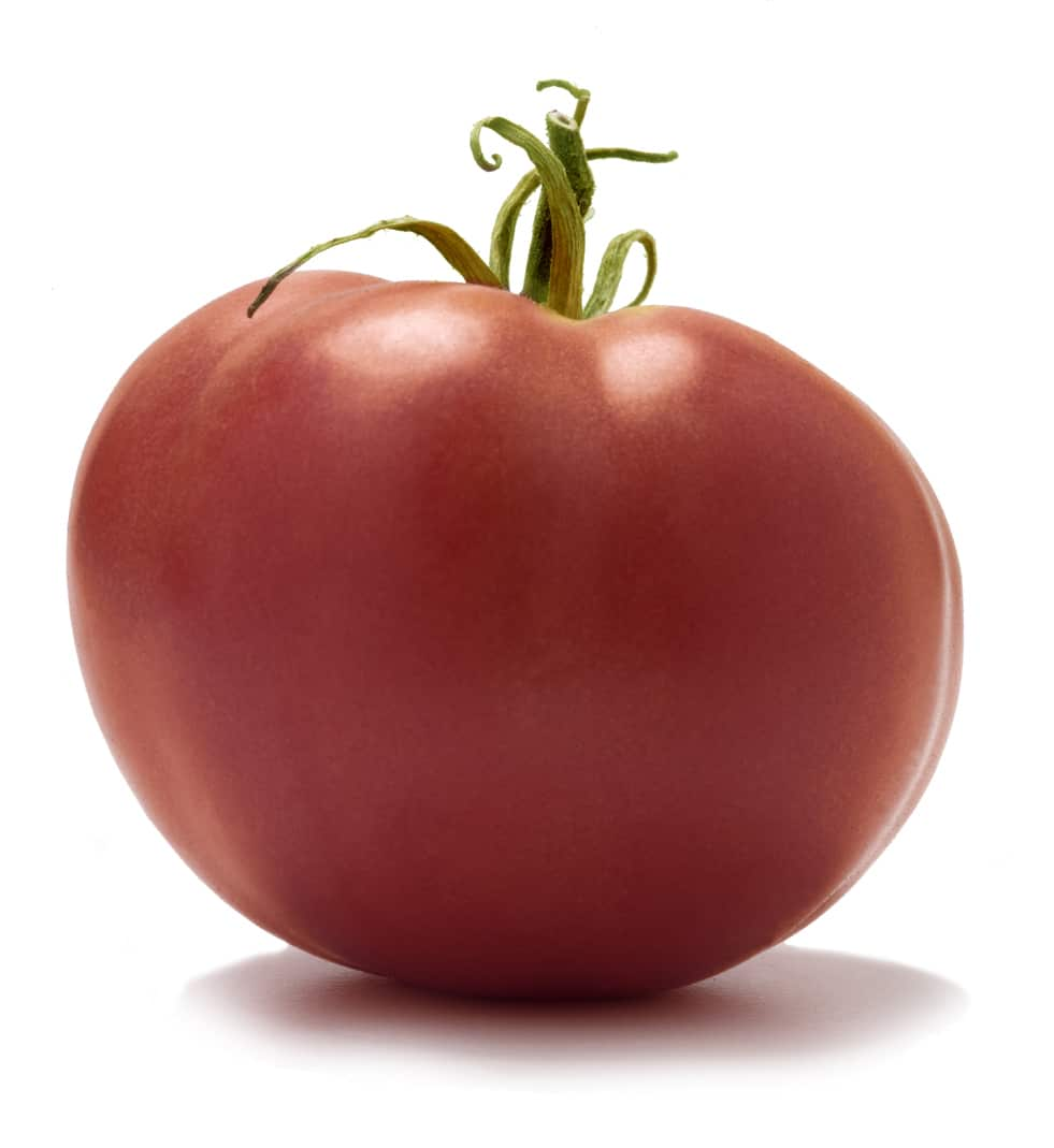 1531924051 caspian pink information learn how to grow a caspian pink tomato takeseeds com - Caspian Pink Information - Learn How To Grow A Caspian Pink Tomato