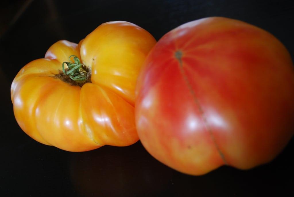 1532437715 learn about growing hawaiian pineapple tomatoes takeseeds com - Learn About Growing Hawaiian Pineapple Tomatoes