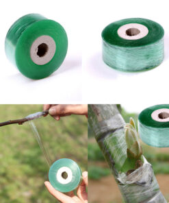 1735 dzapa5 247x296 - 1Roll 2CM x 100M Stretchable Self-adhesive Nursery Grafting Tape - garden-supplies -