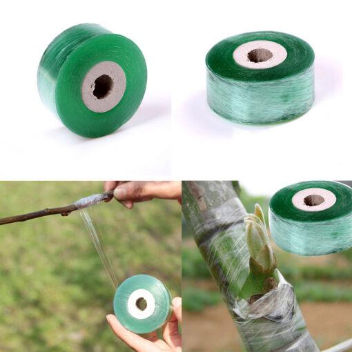 1735 dzapa5 510x510 - 1Roll 2CM x 100M Stretchable Self-adhesive Nursery Grafting Tape - garden-supplies -
