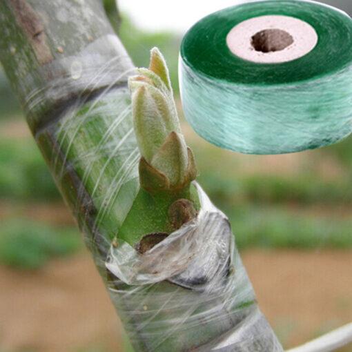 1735 s6ecov 510x510 - 1Roll 2CM x 100M Stretchable Self-adhesive Nursery Grafting Tape - garden-supplies -
