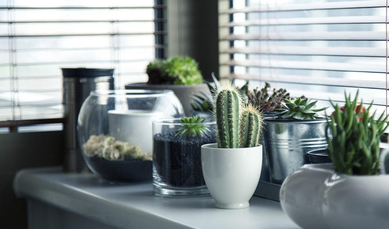 pots 716579 12801 - pots-716579_1280[1]