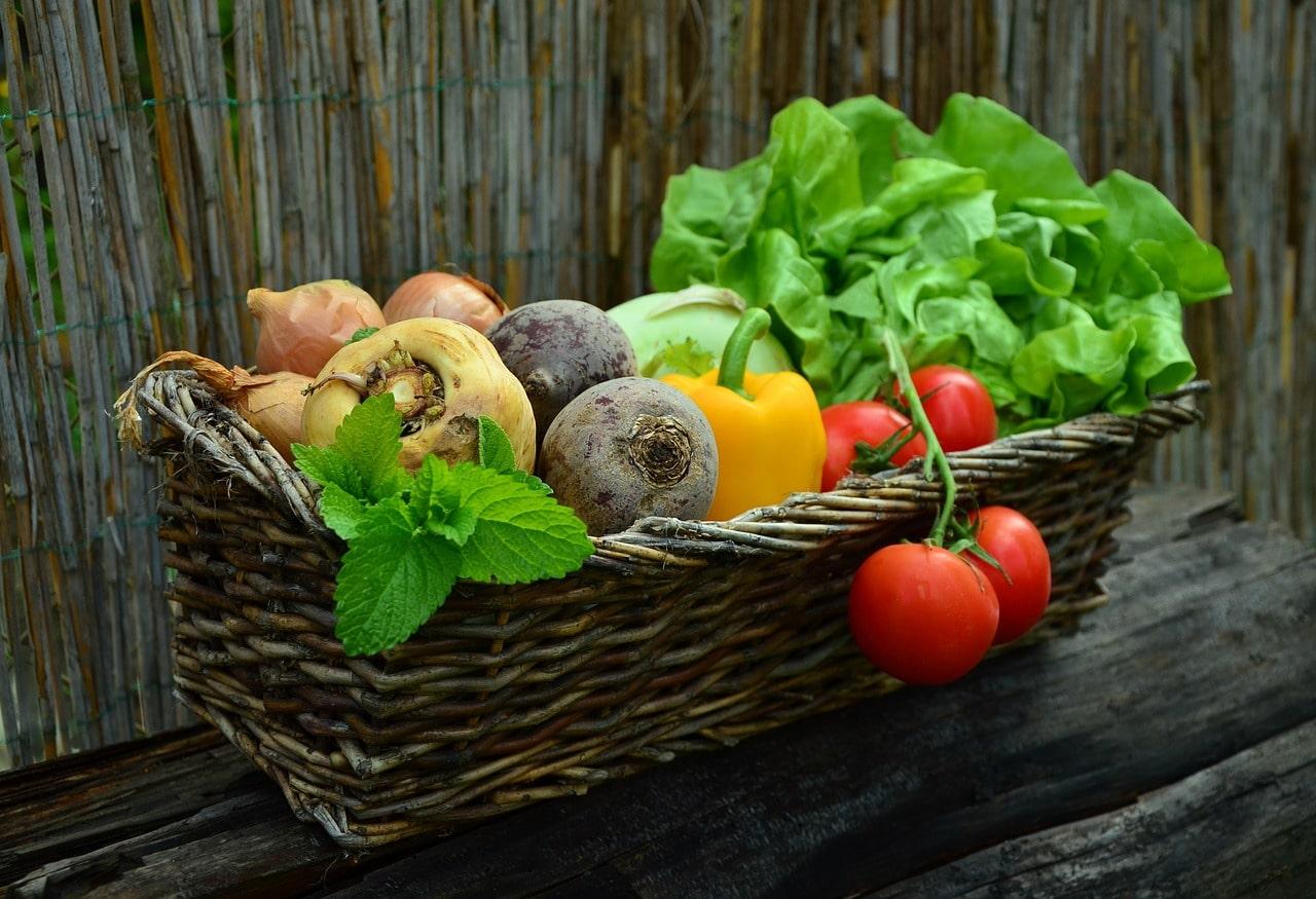 vegetables 752153 12801 - vegetables-752153_1280[1]