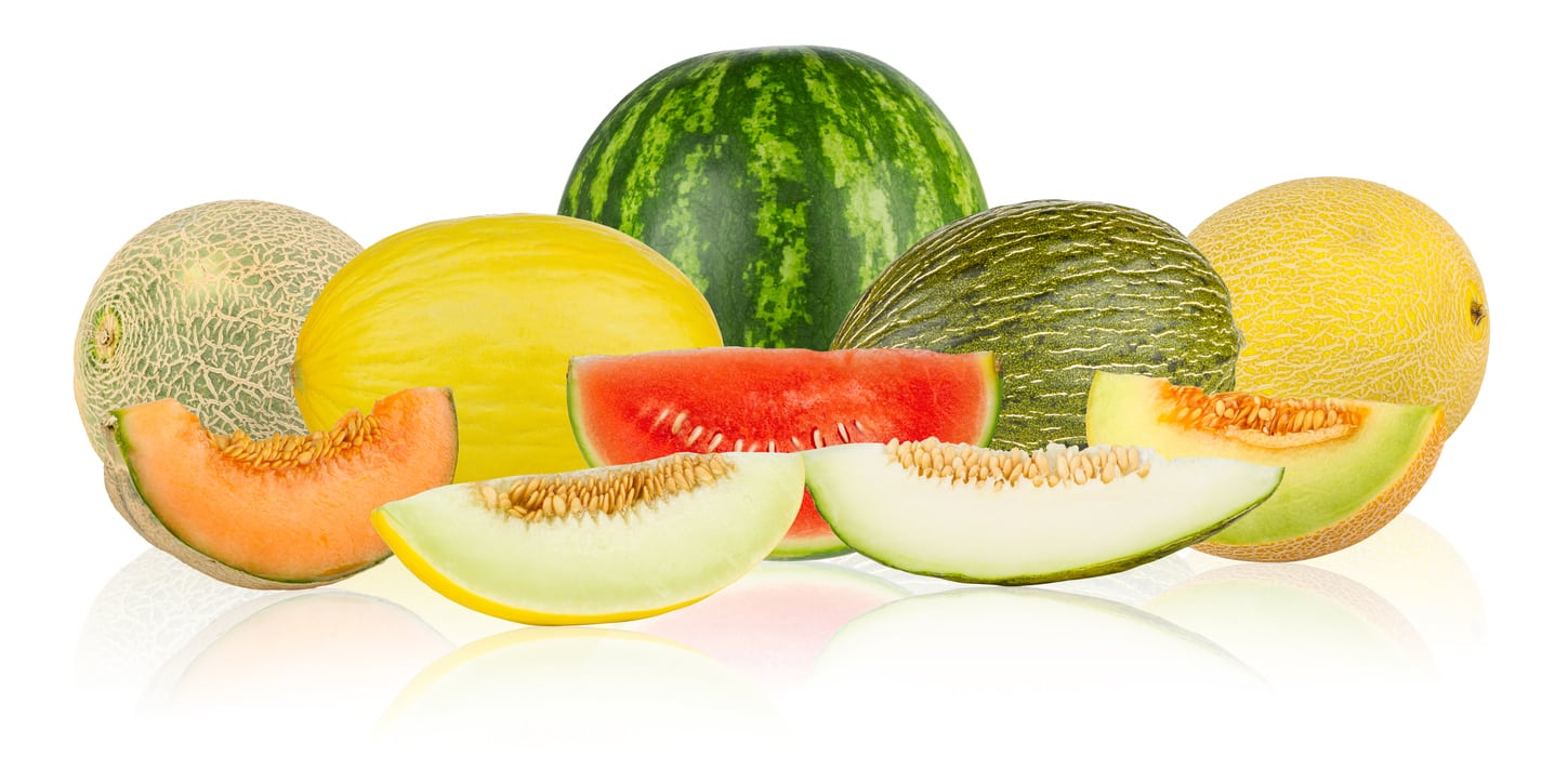 1535825828 zone 6 melon varieties can you grow melons in zone 6 gardens takeseeds com - Zone 6 Melon Varieties – Can You Grow Melons In Zone 6 Gardens