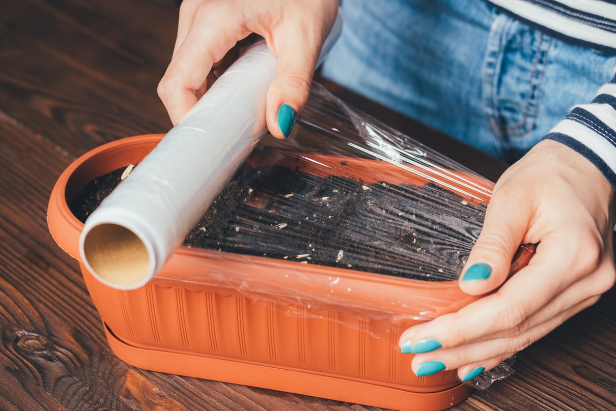 1540293828 tips for gardening with plastic wrap takeseeds com - Tips For Gardening With Plastic Wrap