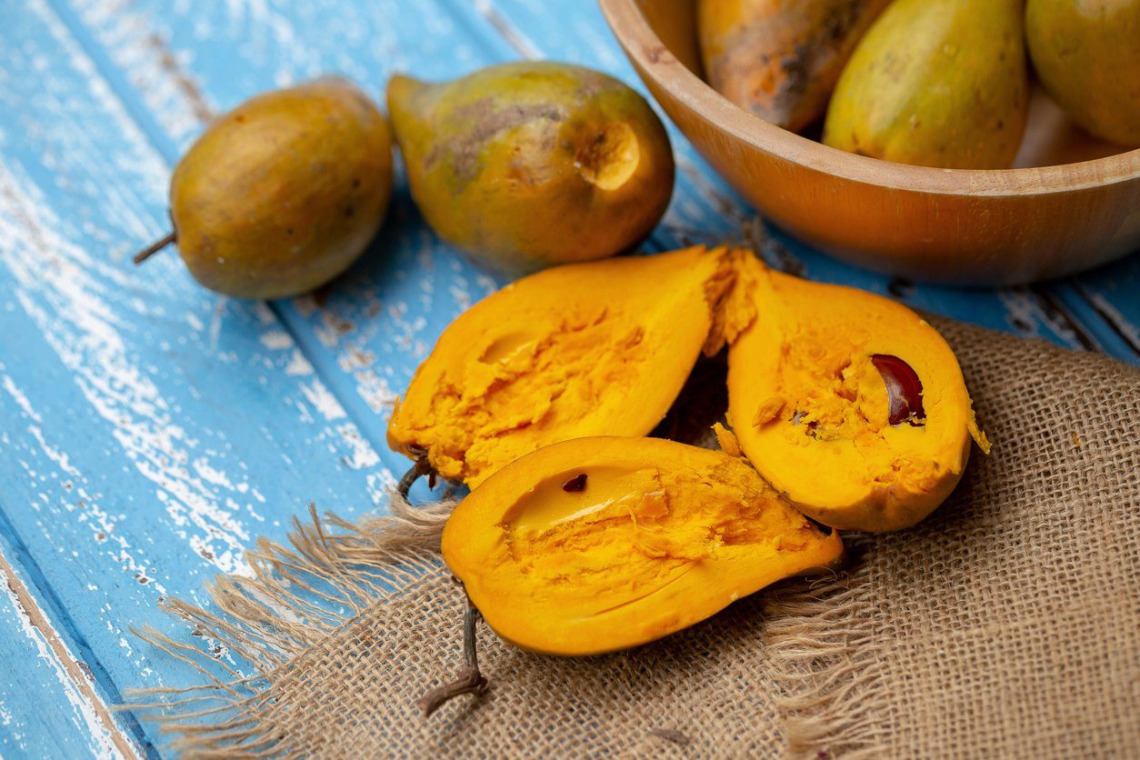 1548038774 learn how to grow eggfruit trees in the landscape takeseeds com - Learn How To Grow Eggfruit Trees In The Landscape