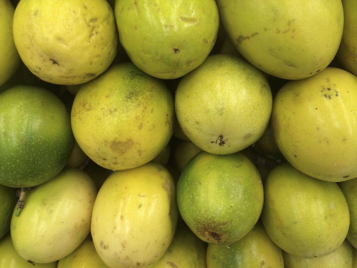 1548168575 learn about camu camu fruit trees takeseeds com - Learn About Camu Camu Fruit Trees