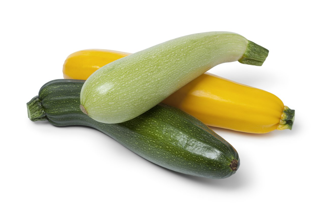1551812614 how many kinds of summer squash are there takeseeds com - How Many Kinds Of Summer Squash Are There